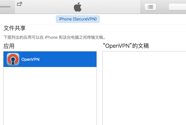 Setting up OpenVPN on iOS, step 2